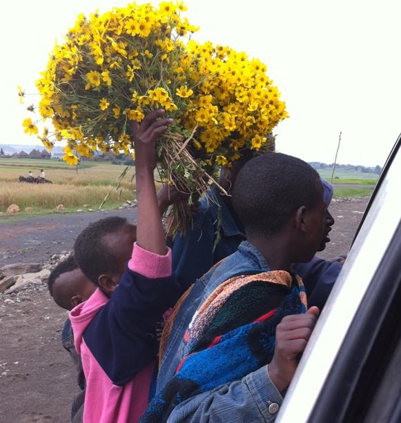 Ethiopian New Year - 2003 (2010 G.C)