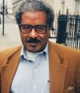 Pro. Mesfin Woldemariam